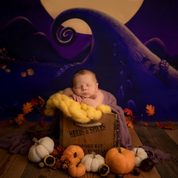 Newborn, maternity and baby photographer Sarah  Thew (sarahthew). Photo of 14 October