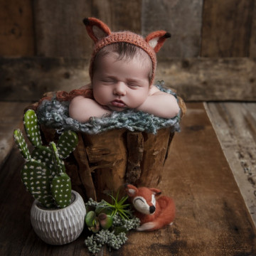 Baby photographer Rebekah Conant (RebekahConant). Photo of 13 September