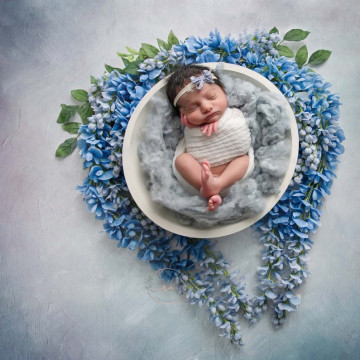 Baby photographer Rebekah Conant (RebekahConant). Photo of 14 June