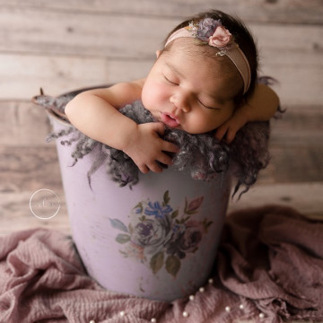 Baby photographer Laura Messer (sweetlittlemestudio). Photo of 25 November