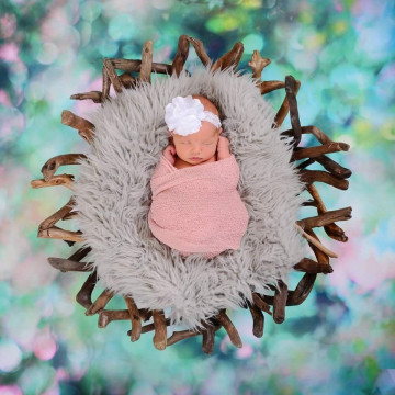 Baby photographer Cyndi Lange (bellamiphotography). Photo of 12 August