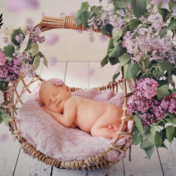 Baby photographer Aleksey Detkov (BabyFoto). Photo of 15 September
