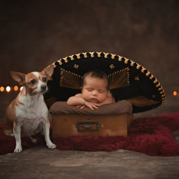Baby photographer Maximiliano Acosta Verrier (madresanta). Photo of 15 November