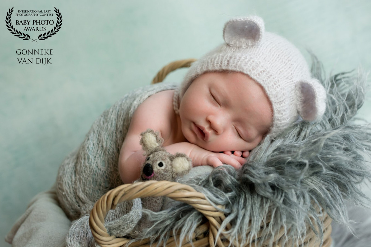 Newborn, maternity and baby photographer Gonneke  Van Dijk (Gonneke). Photo of 07 September